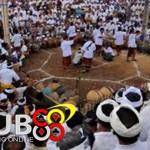 Bali Akan Halalkan Arena Judi Sabung Ayam